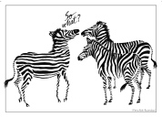 Zebra design on greeting card