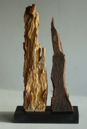 Stand Together, Wood from a Gambian Beach